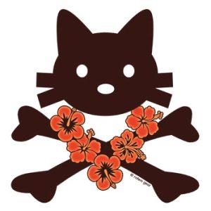 kittyX-summersm